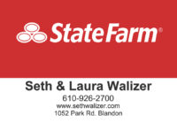 State Farm – Seth